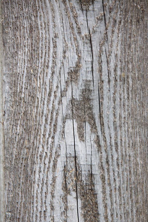 Deski drewniana tekstura zdjęcie royalty free