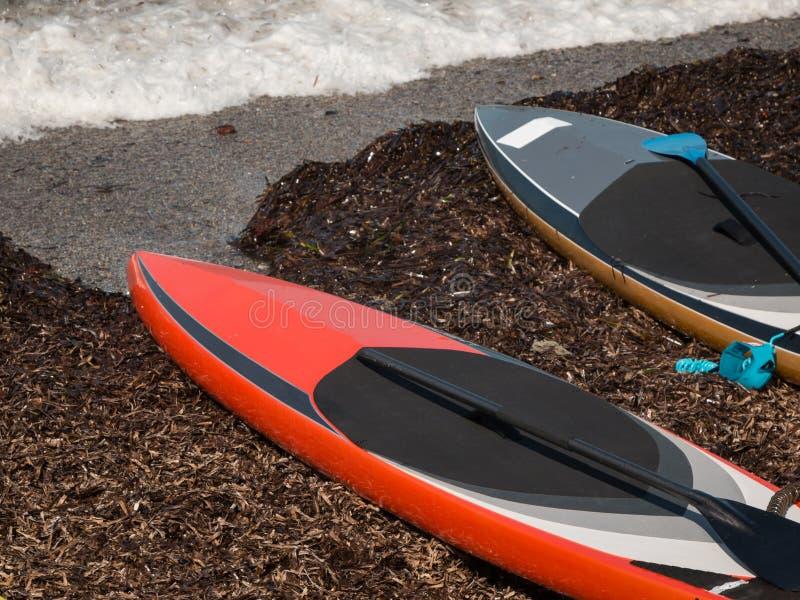 Deski Wyznaczać dla Stoją up Surfować na plaży zdjęcia stock