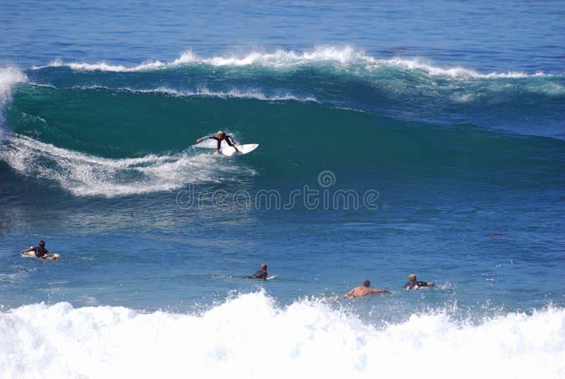 Deskowy surfingowiec przy strumyk ulicy plażą, laguna beach, zdjęcia royalty free