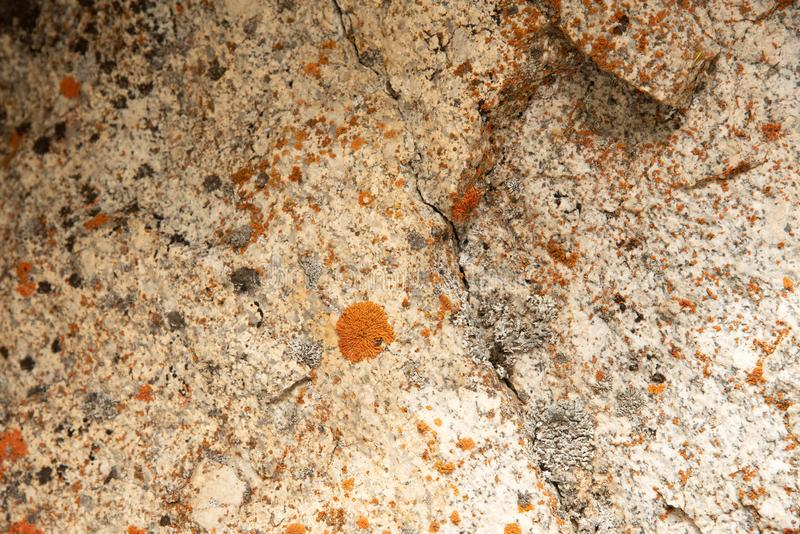 Background of orange and gray texture rock formations stock photography