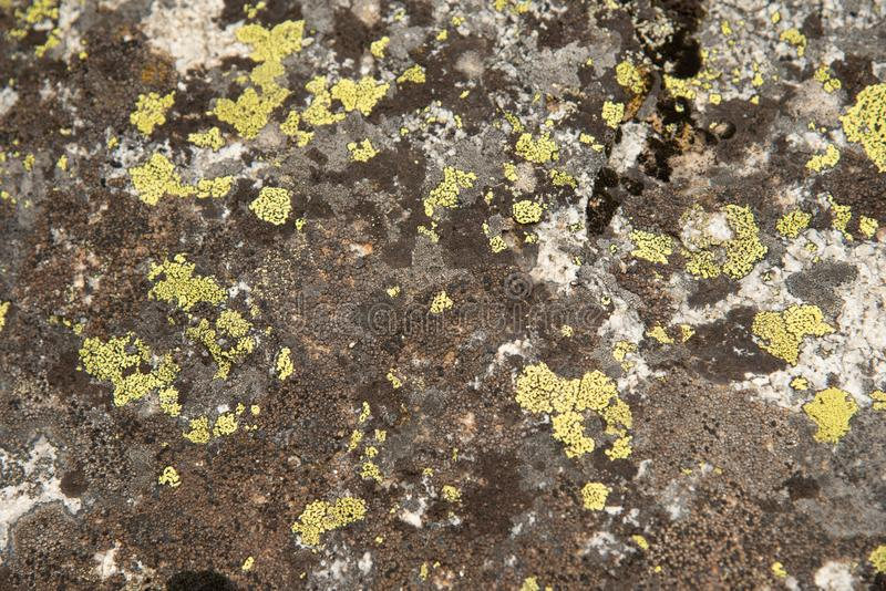 Background texture rock formations stock image