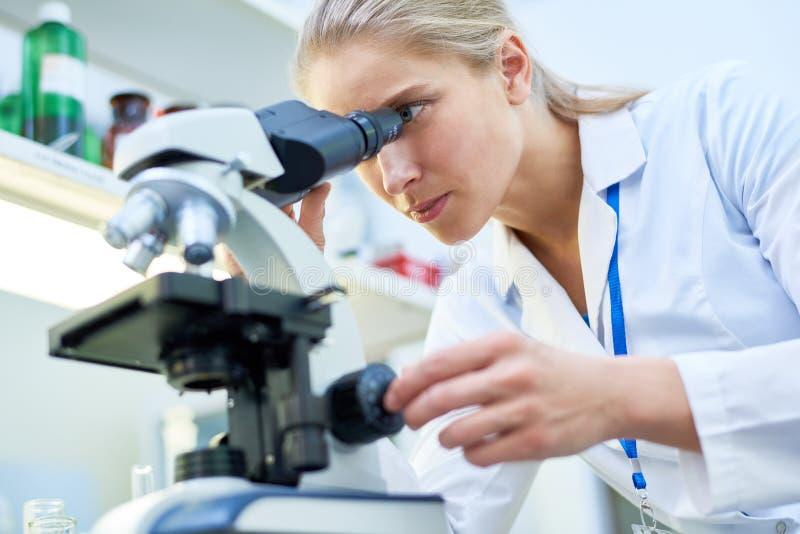 Deskundige wetenschapper die biologische substantie bekijken door microscop royalty-vrije stock fotografie