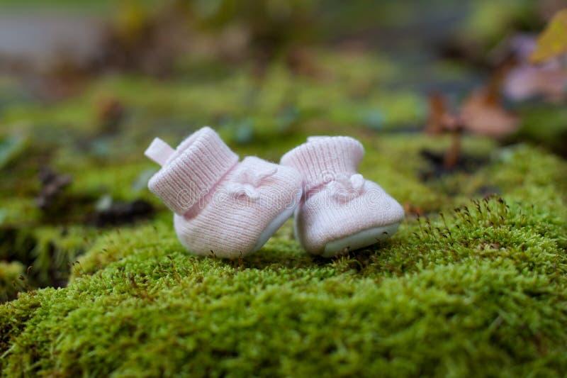 Deslizadores cor-de-rosa pequenos do bebê no fundo da grama verde Sapatas vermelhas do miúdo fotografia de stock