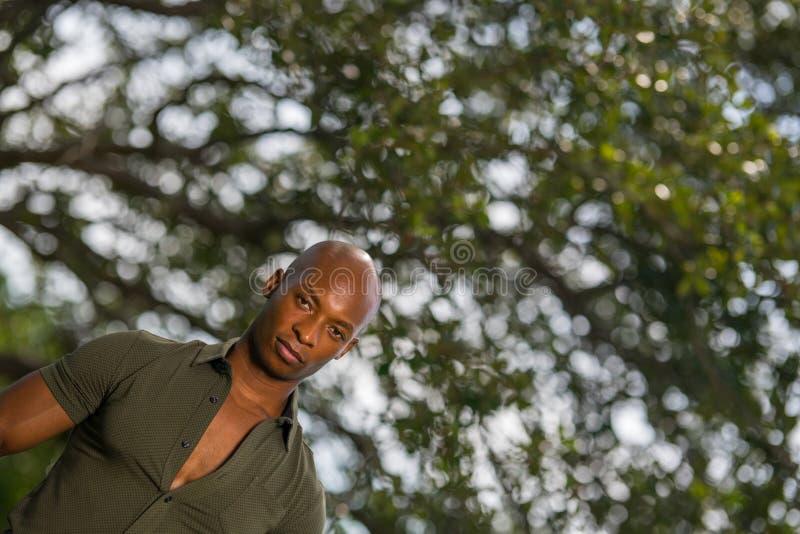 Desloque a foto de um homem negro novo considerável que levanta com árvores verdes fotos de stock royalty free