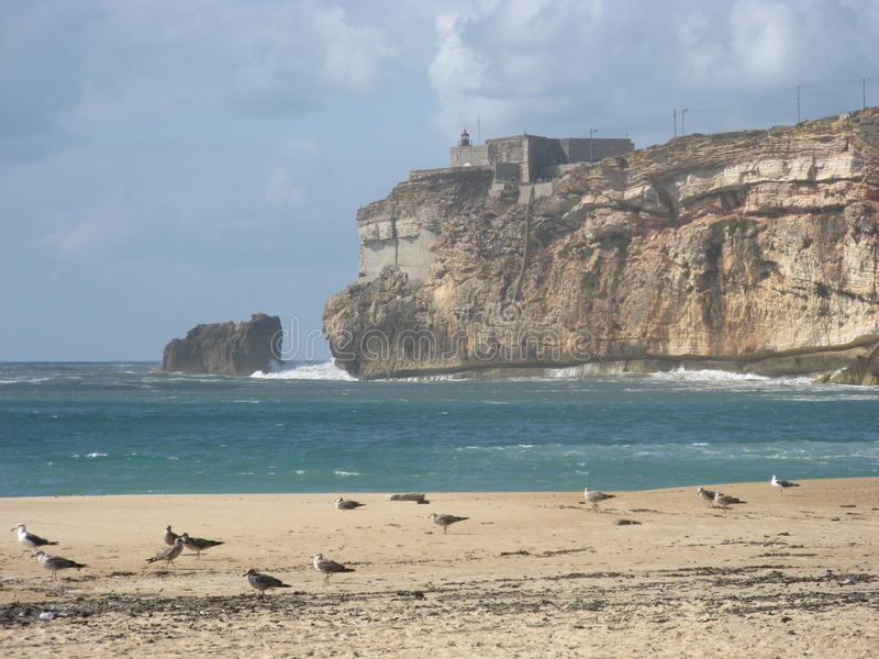 Desolate beach in Nazare at Portugal royalty free stock photo