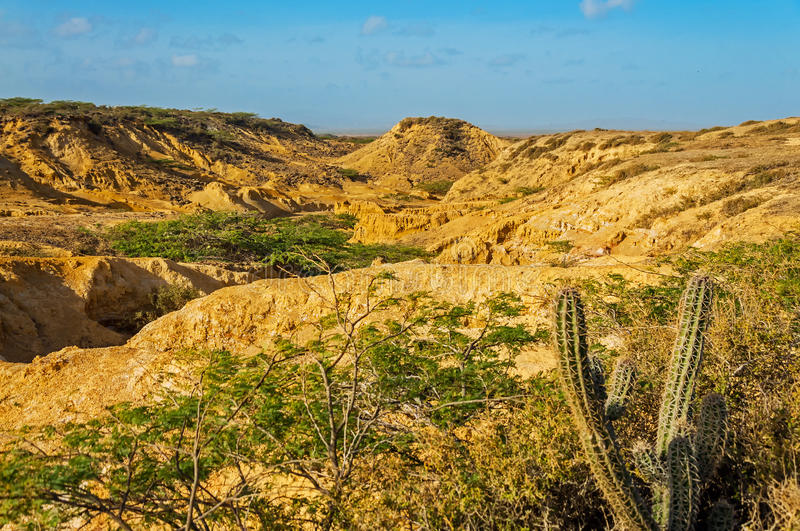 Desolate Desert Landscape. View in La Guajira, Colombia royalty free stock photos