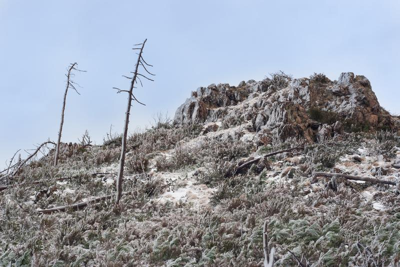 Desolate dramatic landscape: a hill covered with ice. Desolate landscape: a hill with rocks, dead trees and shrubs covered with ice after a freezing night stock image