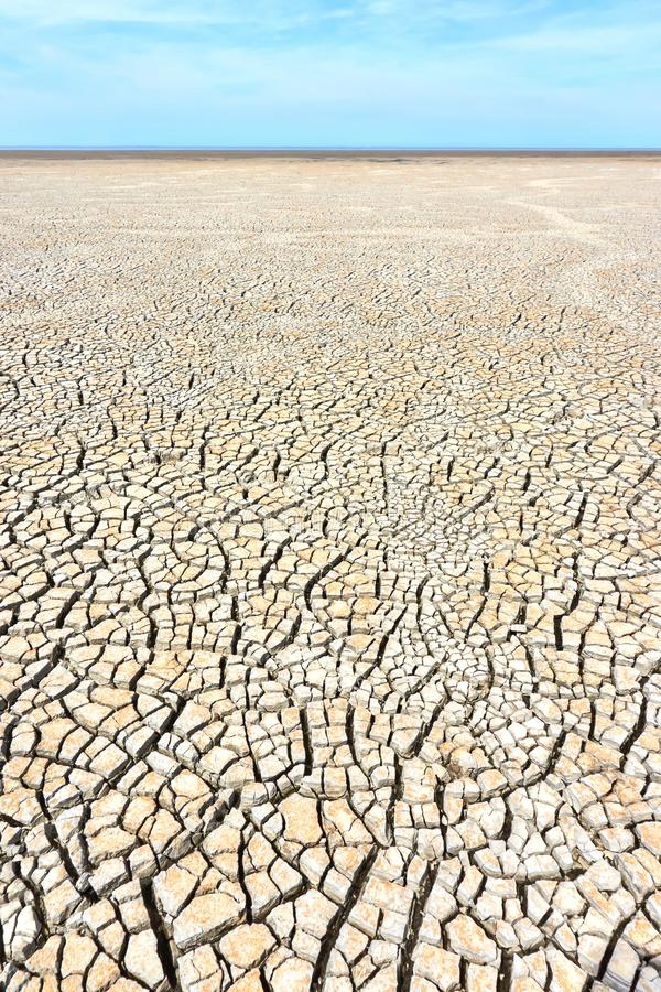 Desolate landscape with cracked ground at the seashore. Brown, beige, light tan and grey colored. Concept of global warming. Vertical image royalty free stock photo
