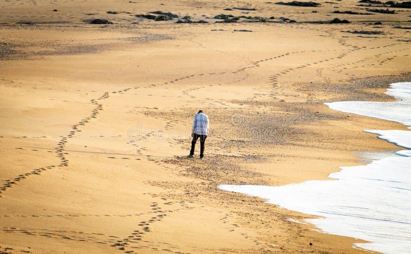 Desolate Man on Beach royalty free stock photography