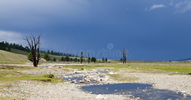 Desolate Mongolian Scene Royalty Free Stock Photos
