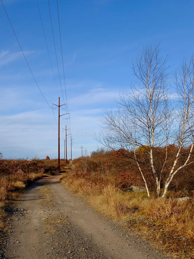 Download Desolate Road stock photo. Image of utility, road, alongside - 83714406
