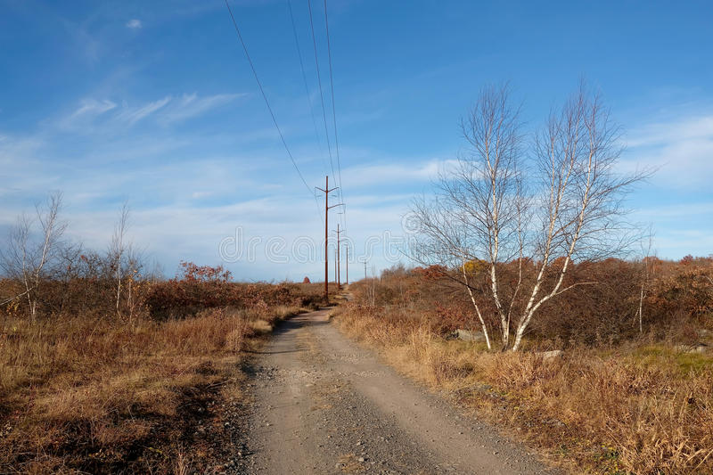 Download Desolate Road stock photo. Image of wilderness, electric - 83715206