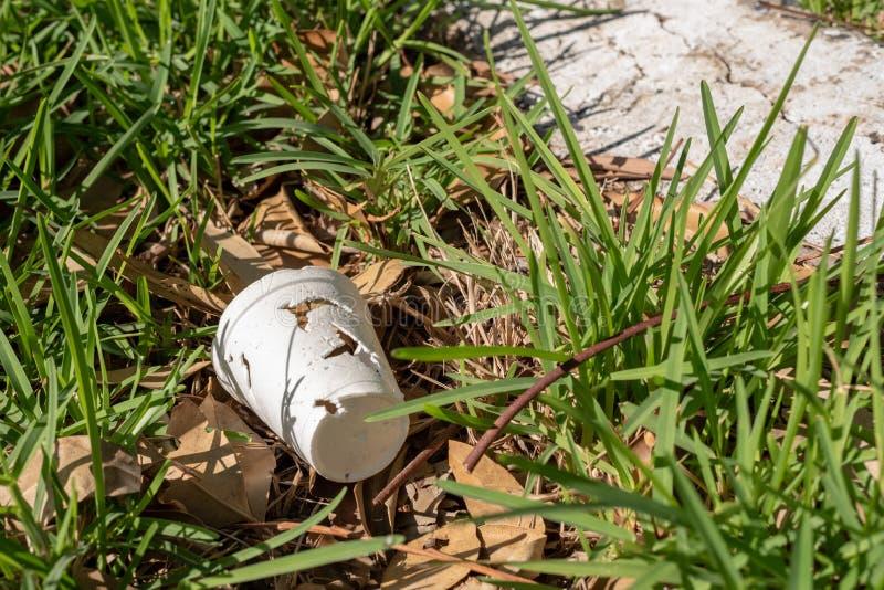 Desperdícios em alguma grama, fim do copo do isopor acima, inferior esquerdo fotografia de stock royalty free