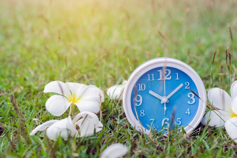 Despertador azul no caderno com fundo da natureza, fim acima do despertador azul fotografia de stock