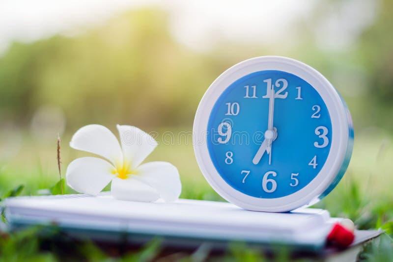 Despertador azul no caderno com fundo da natureza, fim acima do despertador azul fotografia de stock royalty free