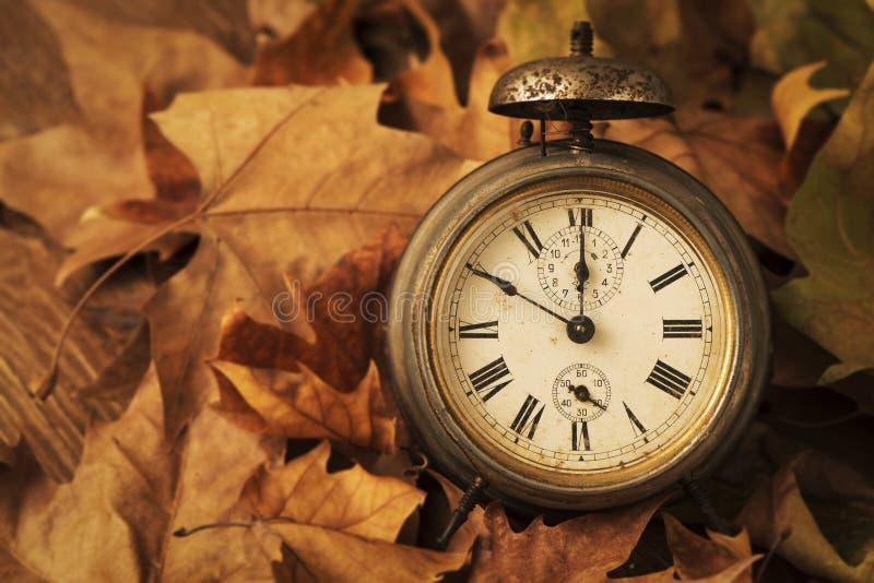 Despertador cercado pelas folhas secas fotos de stock royalty free