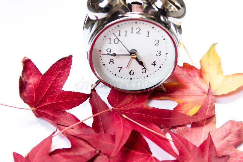Despertador del vintage y hojas de arce rojas en un fondo blanco El venir del otoño foto de archivo