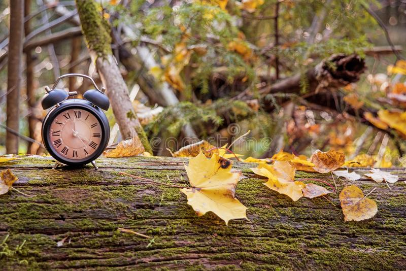 Despertador negro del vintage en las hojas de otoño Foto del extracto del cambio del tiempo foto de archivo