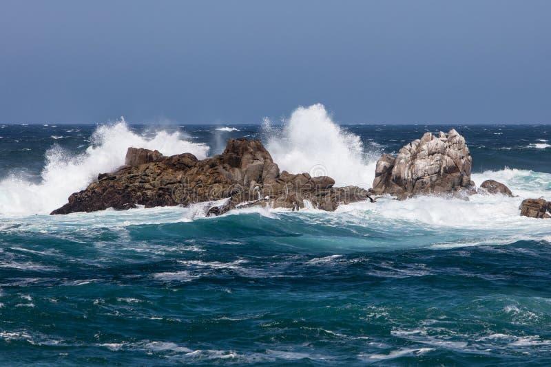 Desplome de las ondas en la costa costa de Monterey foto de archivo libre de regalías