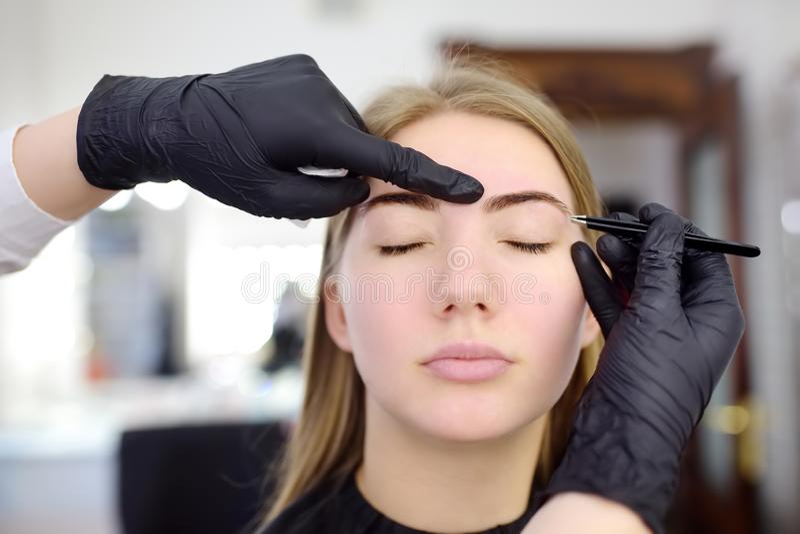 Desplume de la ceja del Cosmetologist Mujer atractiva que consigue cuidado y maquillaje faciales en el sal?n de belleza Cejas de  imágenes de archivo libres de regalías
