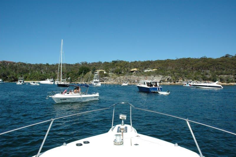 Desporto de barco Austrália imagens de stock
