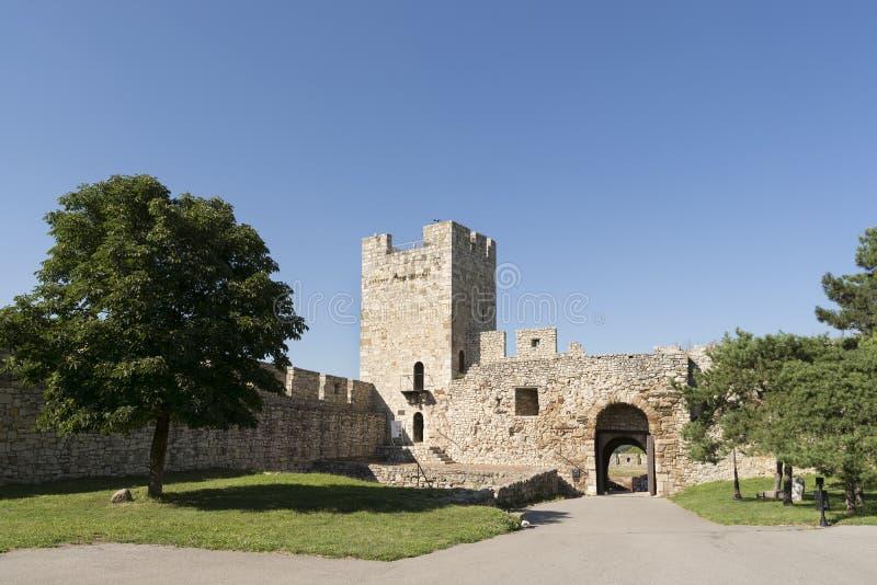 Despot inre fästning komplex för port och för Belgrade för torn, Serbien arkivfoto
