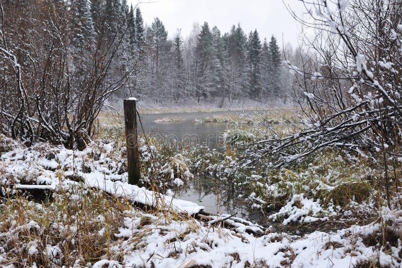 Después de las primeras nevadas foto de archivo libre de regalías