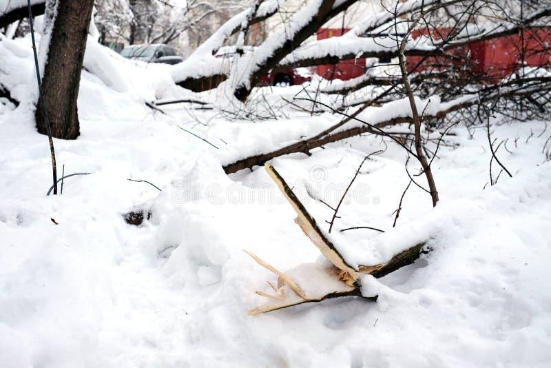 Después de tormenta de la nieve imagen de archivo