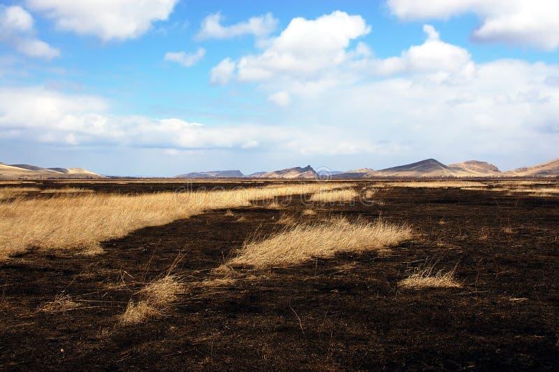 Después del fuego en la estepa fotografía de archivo