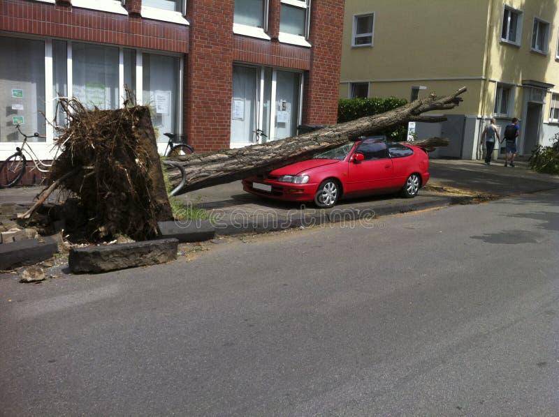 Después del huracán imagenes de archivo