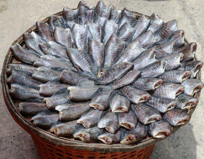 Desséchez les poissons salés photo stock