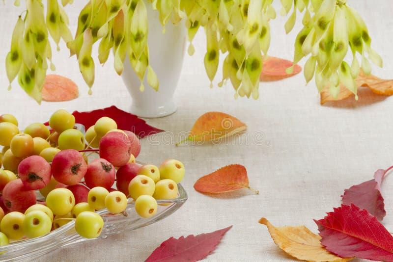 Dessert from autumn stock photography