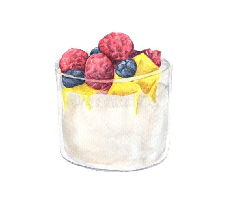 Dessert avec la framboise, la myrtille et la mangue dans un verre illustration libre de droits