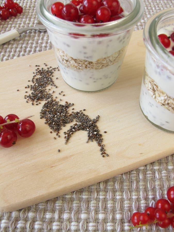 Dessert avec le pudding et les groseilles de chia photographie stock