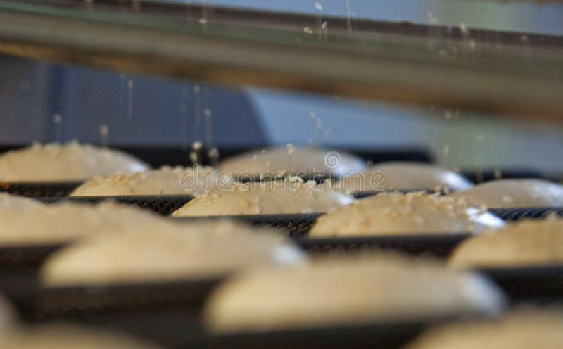 Dessert bread baking in oven. Production oven at the bakery. Manufacture of bread. Dessert bread baking in oven. Production oven at the bakery. Baking bread royalty free stock images