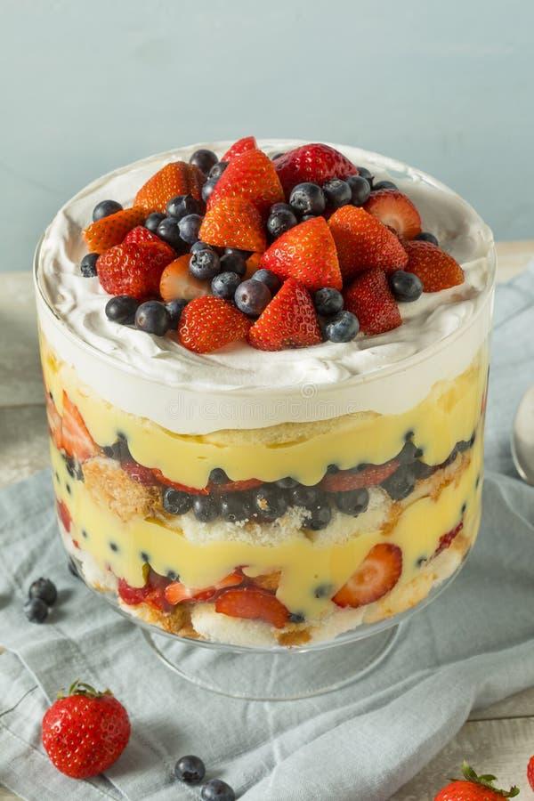 Dessert casalingo dolce della sciocchezza della fragola immagini stock libere da diritti