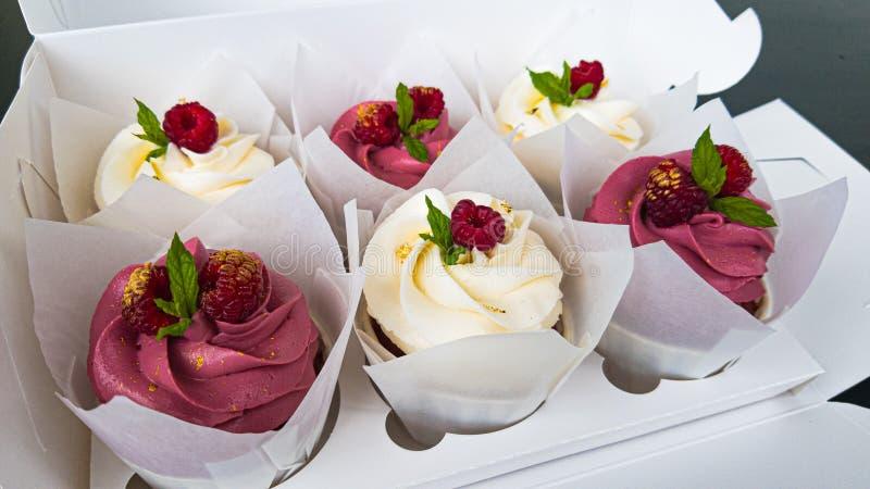 Dessert Cupcake met het roze en witte vullen, frambozen op bovenkant Muntbloemblaadje stock fotografie