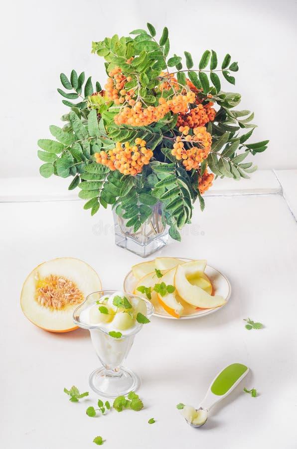 Dessert de bouquet de fromage blanc et de menthe de melon de cendre de montagne photos stock
