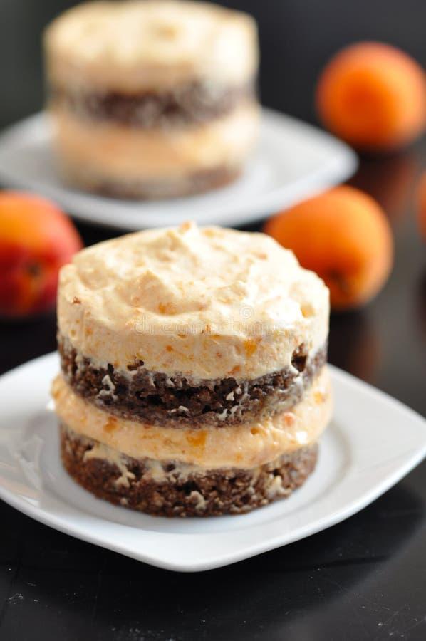 Dessert de chocolat d'abricot image libre de droits