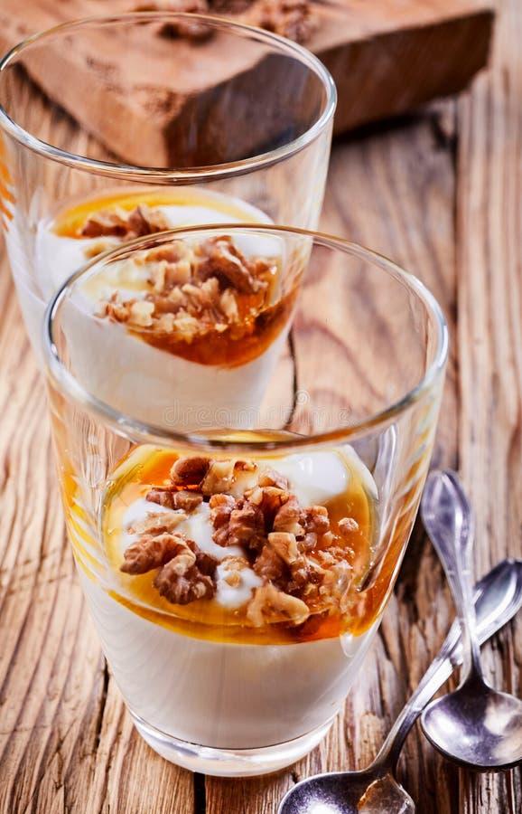 Dessert delizioso con yogurt, miele e le noci immagini stock libere da diritti