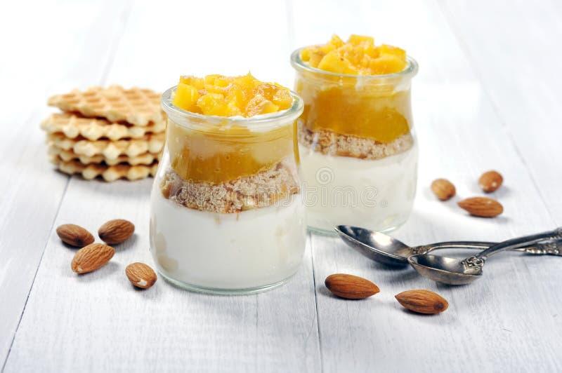 Dessert della frutta con il mango fotografia stock libera da diritti