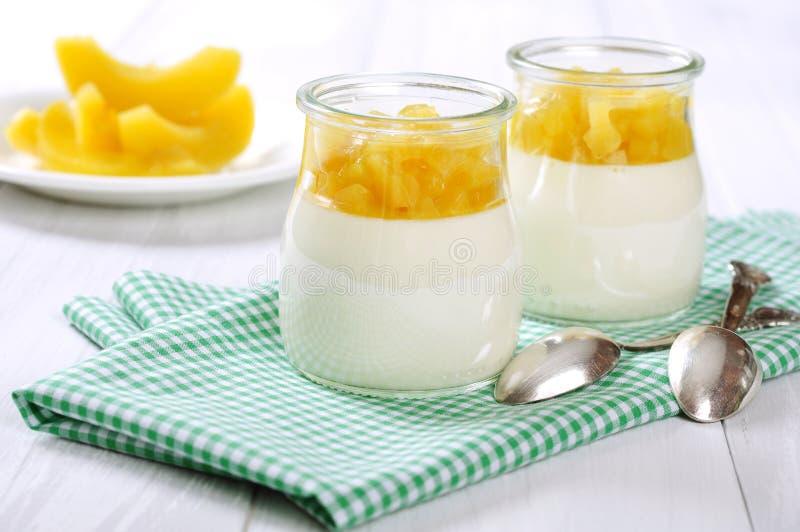 Dessert della frutta con il mango immagini stock libere da diritti