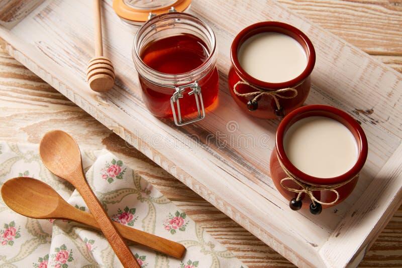 Dessert della latteria della cagliata con miele fotografia stock libera da diritti