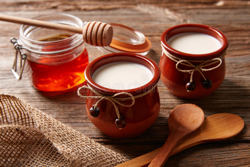 Dessert della latteria della cagliata con miele immagine stock