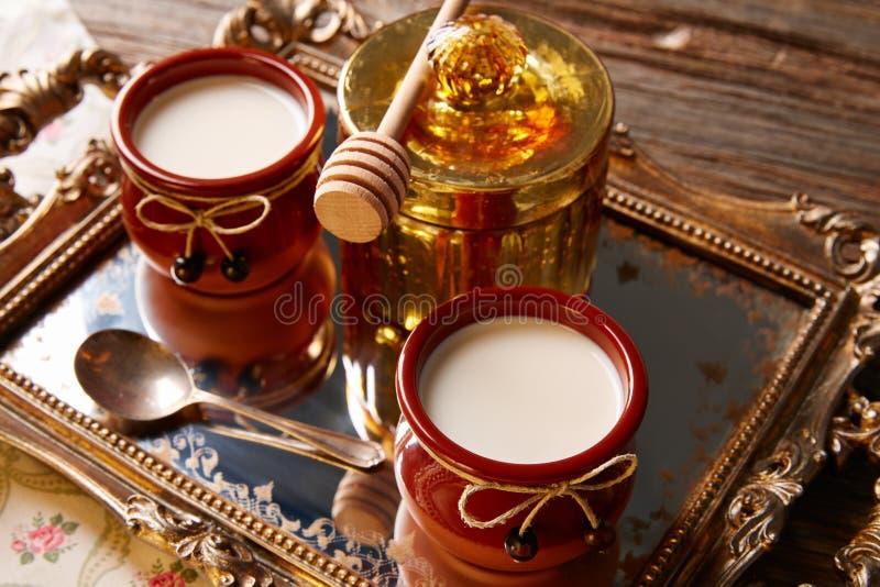 Dessert della latteria della cagliata con miele fotografia stock