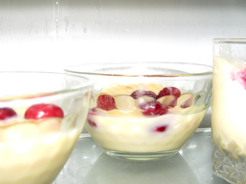 Dessert di Panakota nel frigorifero fotografie stock libere da diritti