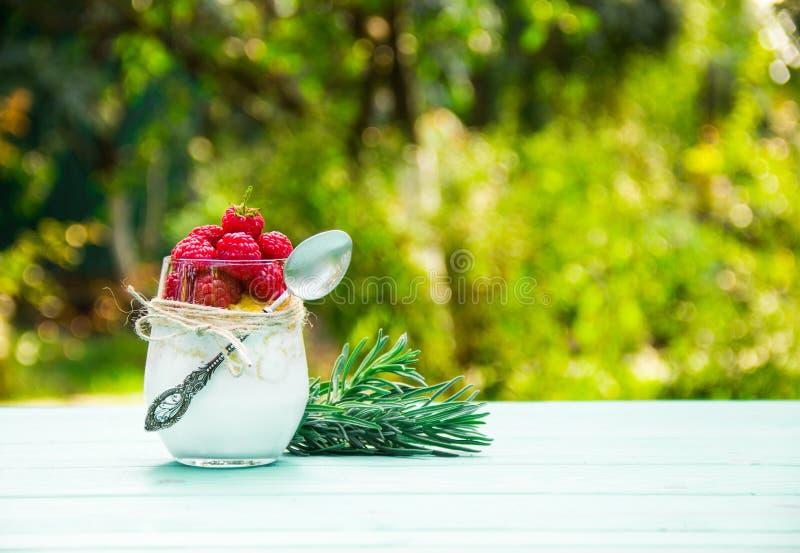 Dessert fait maison de lait avec des framboises smoothies Petit déjeuner dans le jardin image stock