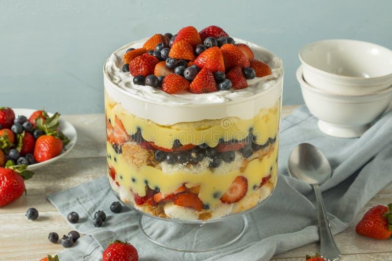 Dessert fait maison doux de bagatelle de fraise image libre de droits