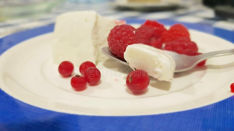 Dessert of fresh cheese and red fruits stock image