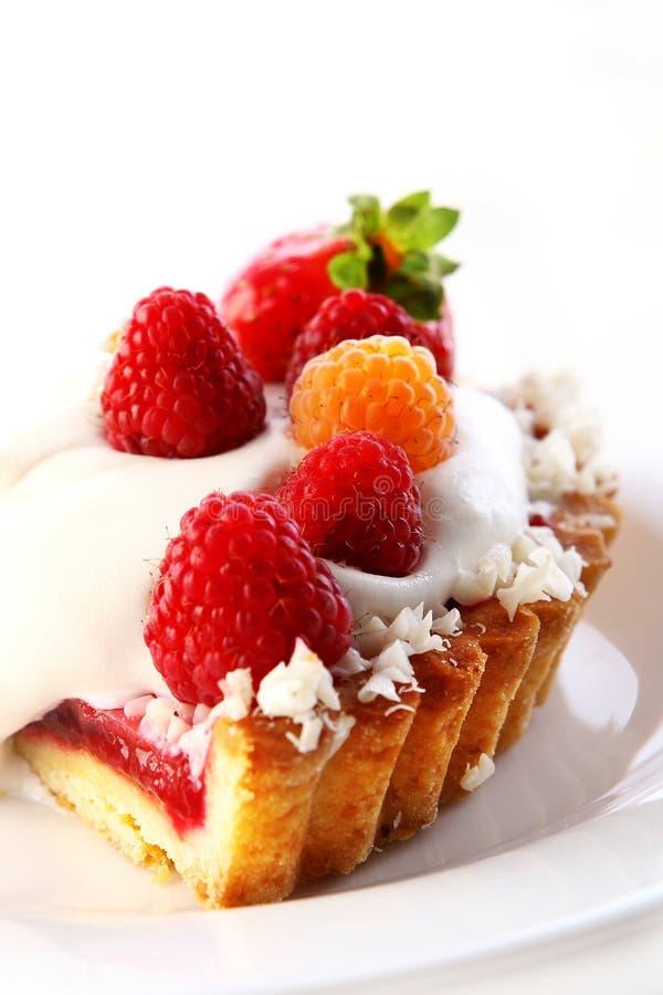 Download Dessert Fruitcake Cake With Blueberry Stock Photo - Image: 14851300
